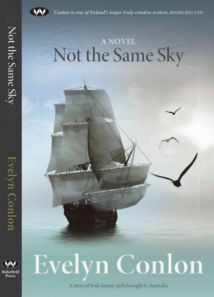 Not the Same Sky, a novel by Evelyn Conlon